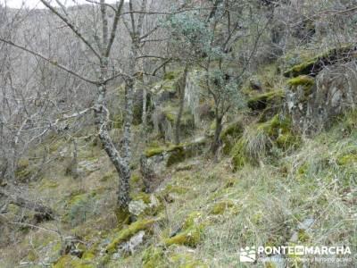 Cascadas del Aljibe;visitas por madrid;agencia senderismo;excursiones de aventura